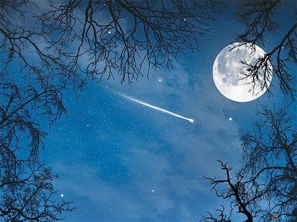 Moon Stories